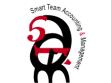 LogoSmart Team Accounting